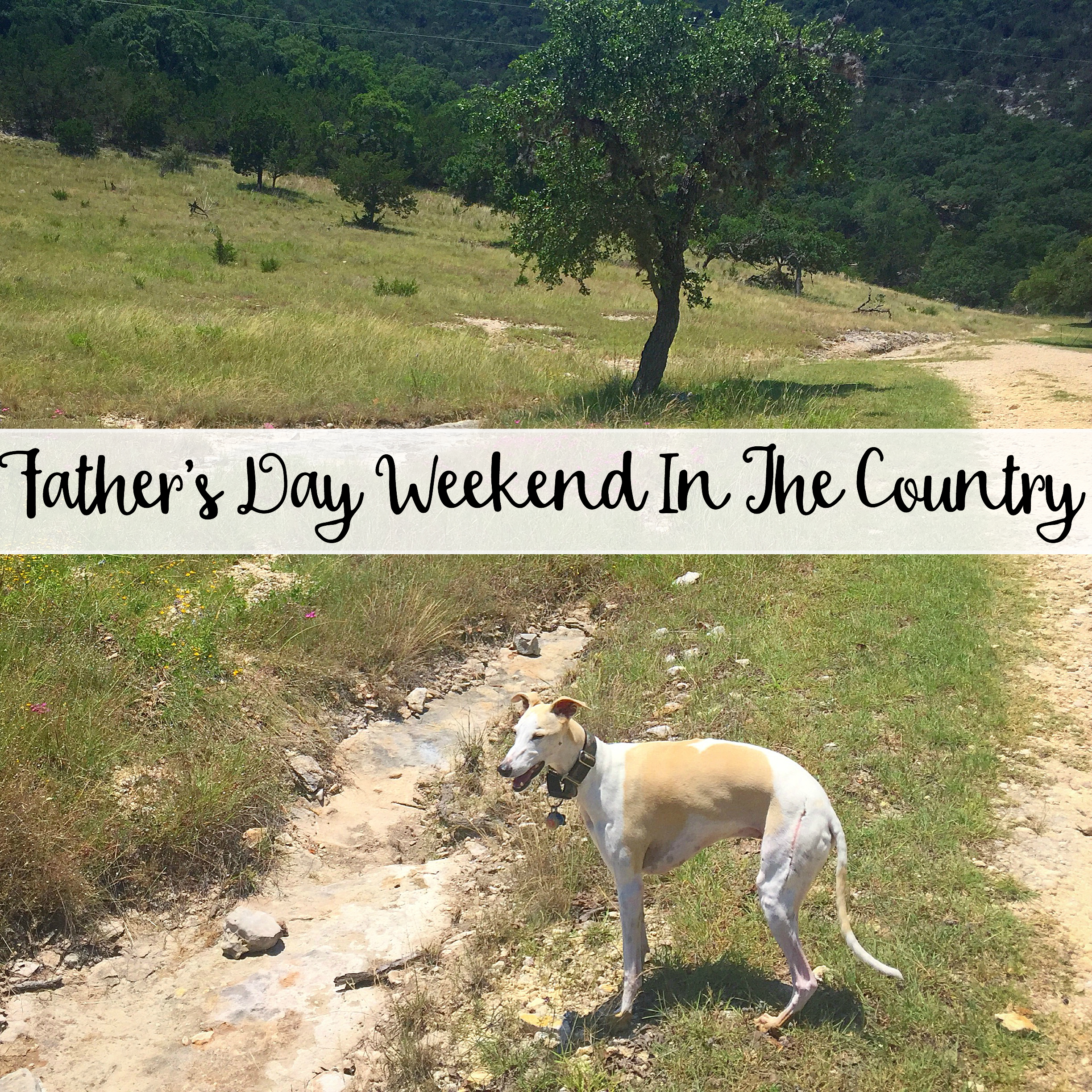 The Wandering Weekenders- Father's Day Weekend In The Country