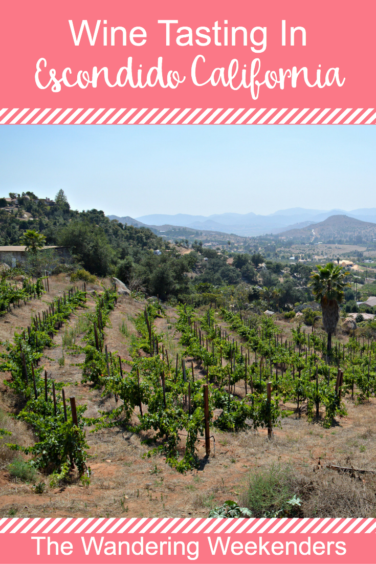 Napa Valley isn't the only location for great wine tasting in California, wine tasting in Escondido, about an hour away from San Diego, is fantastic as too!