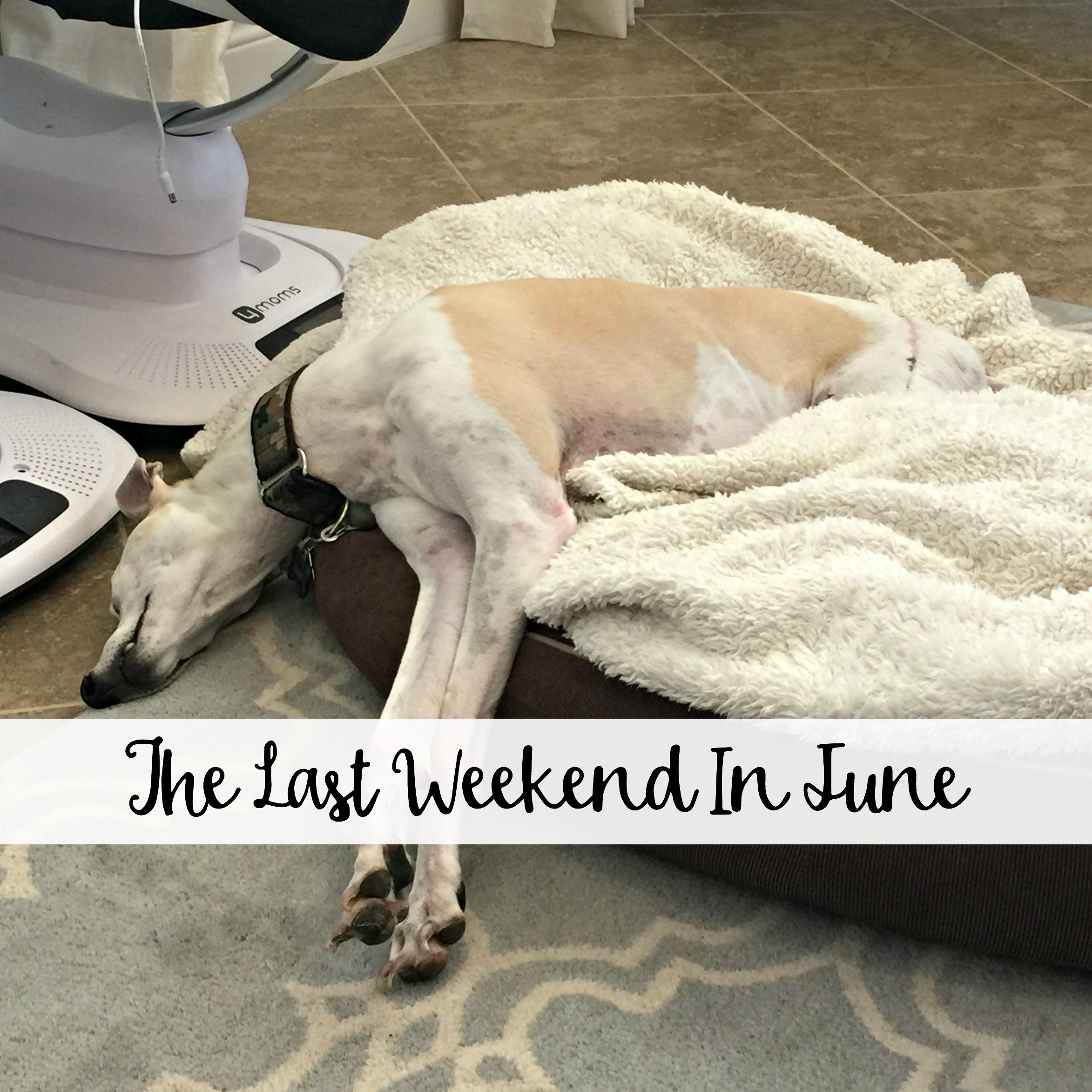 The Wandering Weekenders- The Last Weekend In June