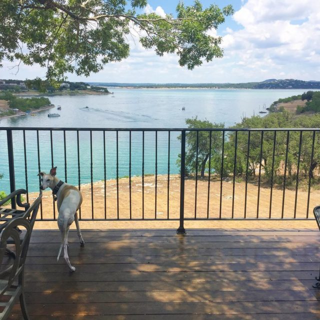 We had such a fun weekend at Canyon Lake withhellip