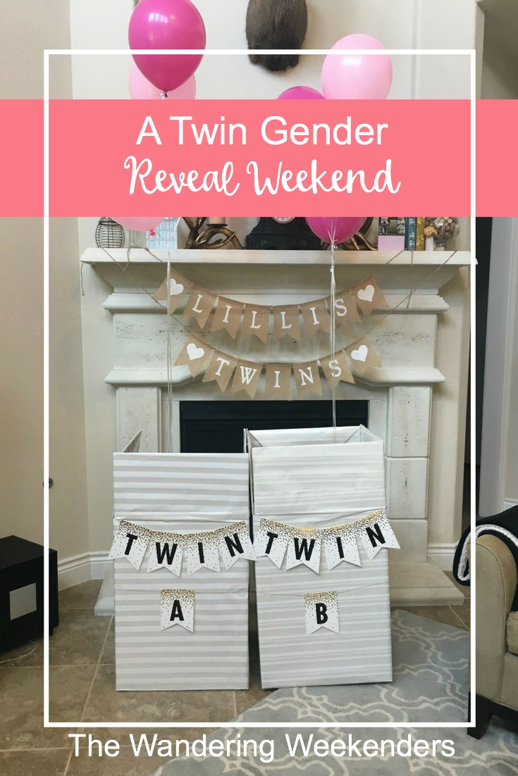 All about our twin gender reveal weekend and all the details for the reveal!