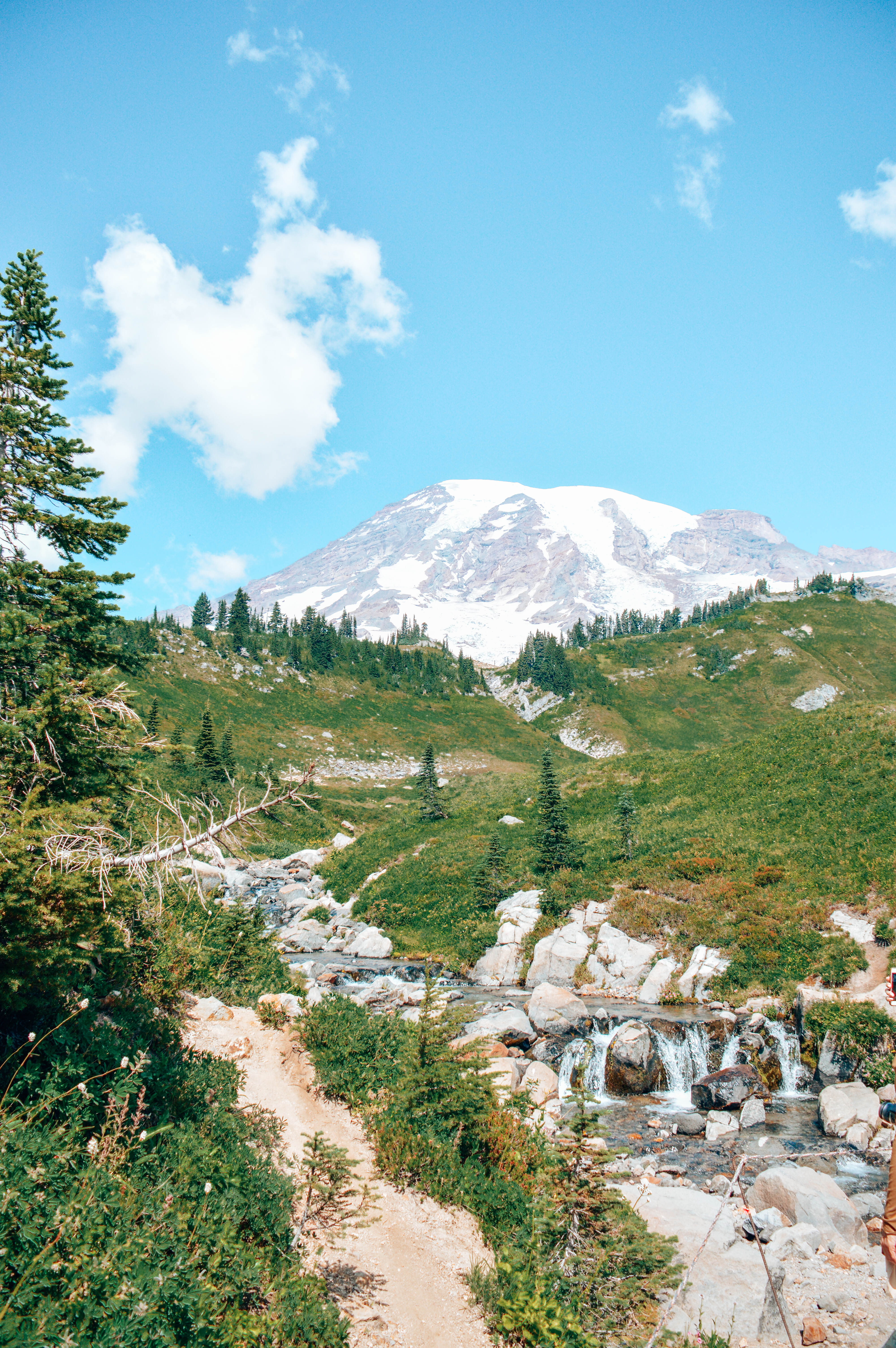 a day trip to mount rainier national park the wandering weekenders. Black Bedroom Furniture Sets. Home Design Ideas